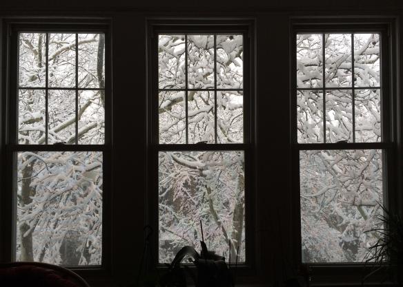 Zana Bass_Snow Day