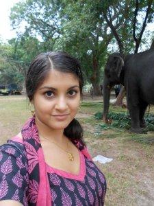 Zana Bass_Elephant