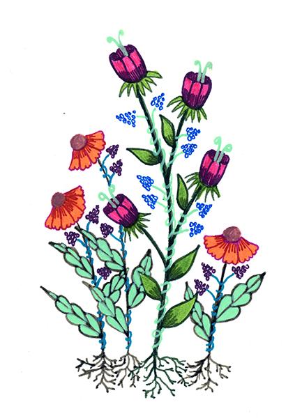Zana Bass-May 2017 Flowers 28 3